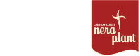 logo-manastire-nera